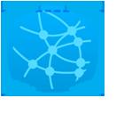 network virtual